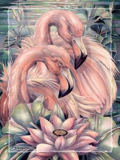 Flamingo Painting, Flamingo Decor, Pink Flamingos, Arches Watercolor Paper, Watercolor Print, Watercolor Paintings, Flamingo Coloring Page, Tattoo Bein, Pretty Birds