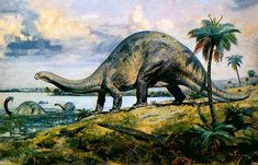 Traditional image of Brontosaurus, by Zdenek Burian, based on a similar painting by Charles R Knight. Modern reconstructions are very different.
