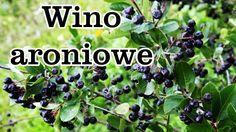 Wino aroniowo - jabłkowe