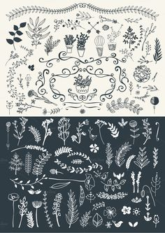 Fresh Florals hand drawn megapack by Lisa Glanz on Creative Market