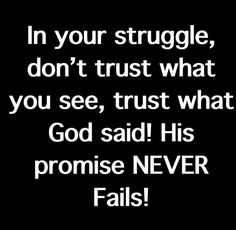 Amen! Dont Trust, What You See, No Worries, Don't Worry, Fails