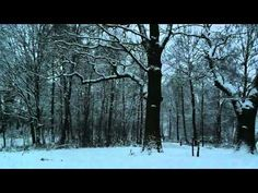 ▶ فيروز، رجعت الشتوية - YouTube