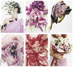 bloom magazine - Поиск в Google