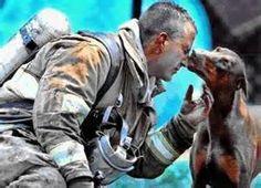 animali e uomini - Risultati 22find.com Yahoo Italia della ricerca di immagini