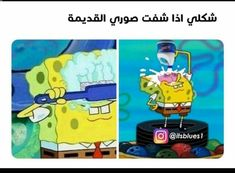 Funny Arabic Quotes, Funny Quotes, Islamic Quotes On Marriage, Cool Pets, New Life, Polar Bear, Best Quotes, Family Guy, Lol