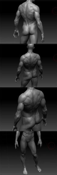 Human anatomy study_vray : 네이버 블로그 by Jang Seongwhan Anatomy Back, Muscle Anatomy, Anatomy Study, Body Anatomy, Atlas Anatomy, Male Pose Reference, Human Reference, Anatomy Reference, Human Anatomy Drawing