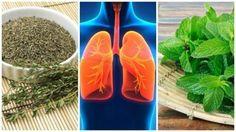 Voorkom ademhalingsproblemen en verbeter de gezondheid van je longen met deze natuurlijke en zuiverende kruiden. Maak er een dagelijkse gewoonte van.