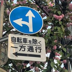 moved — ↬ 可爱又甜蜜 cute and sweet Aesthetic Japan, Japanese Aesthetic, Korean Aesthetic, Aesthetic Themes, Blue Aesthetic, Aesthetic Photo, Aesthetic Pictures, Travel Aesthetic, Instagram Cool