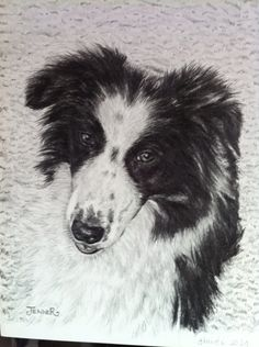 Pencil drawing Pencil Drawings, Husky, Dogs, Animals, Animales, Animaux, Pet Dogs, Doggies, Animal