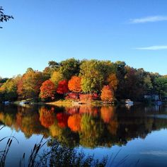 "Photo Contest Winner Captures Autumn Glory - Reston, VA Patch    Congratulations to Kaitlin Chittenden, whose photo of fall foliage in Reston is the winner of Reston Patch's photo contest.     She will receive a gift card to Yogiberry.    Said one reader: ""The photo by Kaitlin Chittenden is magnificent! The colors are exquisite, along with the reflection on the water and the cattails in the foreground. It is definitely a welcoming photograph and a beautiful place anyone would want to visit!"""