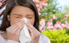La Rinite Allergica o Raffreddore da fieno è un'infiammazione della mucosa nasale.Si presenta particolarmente in primavera con l'aumento dei pollini nell'aria.
