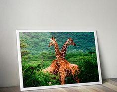 Poster girafas com moldura