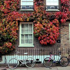 Cambridge in Cambridgeshire, England