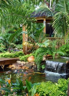 Koi pond around a nice big gazebo to just hang out and for Outdoor tropical fish pond