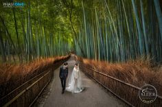 《KEDA.Zの幸せな瞬間。京都ストリート》 The Journey of Love in Kyoto. We went to this beautiful bamboo forest for the pre-wedding shoot, amazed by the place! Gear: PhaseOne IQ250 + 645DF+. Photographer ©KEDA.Z Assist. Amazing Group Artist Danny Xeero Post-Production: Keda.Z® PRO TEAM Location: Kyoto, Japan