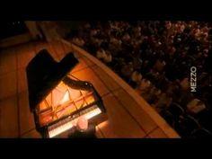 Beethoven Sonata N° 15 'Pastorale'   Daniel Barenboim