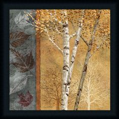 Birch Tree in Autumn I by Conrad Knutsen Leaf 20x20 Framed Art Print Picture