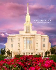 Payson Temple Summer Roses Sunset