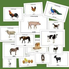 Vocabulario;animales de la granja.