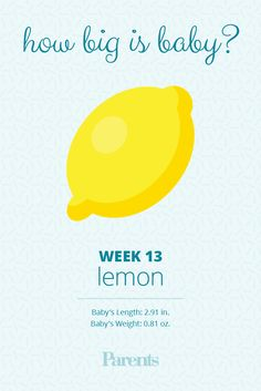 Your beautiful baby is the size of a Meyer lemon this week—and his vocal cords are beginning to develop. Baby Size By Week, Baby In Womb, 13 Weeks Pregnant, Baby Weeks, Reading Food Labels, Third Trimester, Baby Development, How Big Is Baby, Cords