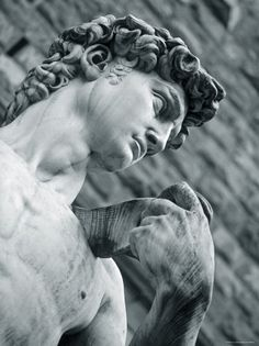 Statue of David by Michelangelo - My all-time favorite statue!  What a beautiful work of genius!