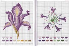 flores ponto cruz graficos