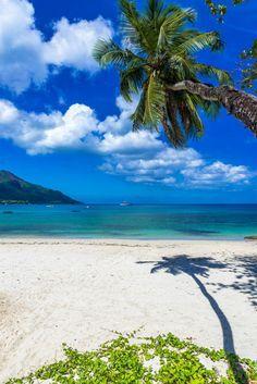 Breathtaking island of Seychelles