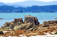 Cambados Galice Espagne 119 - Illa de Arousa,