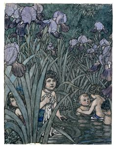 """There are Land Babies – Then why not Water-Babies? """"The Water-Babies"""" illustrated by William Heath Robinson Vintage Illustration Art, Book Illustrations, Heath Robinson, Art Deco Posters, Vintage Art, Vintage Images, Art Museum, Illustrators, Fairy Tales"""
