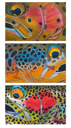 Trout Trio with Flies 2 by Derek DeYoung