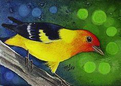 Tanager Bird Art  Melody Lea Lamb ACEO Print #79