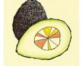 avocado  #art