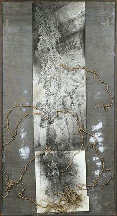 Artwork by Anselm Kiefer, Wurzel Jesse (Arbre de Jesse) Anselm Kiefer, Collage Art, Collages, Organic Art, Encaustic Art, Oeuvre D'art, Painting Inspiration, Altered Art, Les Oeuvres