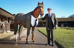 A horse in a suit may sound like a beginning of a silly anecdote, but now it's a reality.
