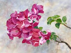 Red Violet Bougainvillea With Textured Background Painting