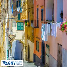 #Italian #island #Procida is famous for its #colorful #marina, #tiny #narrow #streets and many #beaches which all together attract every year crowds of #tourists. #Napoli, #Italy. Discover #GNV routes from/to #Napoli here: http://www.gnv.it/en/ferries-destinations/naples-ferries-campania.html