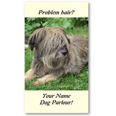 A shaggy dog with hair over it's eyes pet grooming business cards.