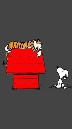Snoopy and Woodstock Shadow Box - Halloween Wallpaper Cat Love Quotes, Book Quotes, Calvin And Hobbes Comics, Snoopy Comics, Calvin And Hobbes Wallpaper, Calvin And Hobbes Quotes, Snoopy Pictures, Snoopy Quotes, Super Cat