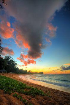 Beach Sunset - Kauai, Hawaii헬로우카지노 YOGI14.COM 헬로우카지노헬로우카지노 YOGI14.COM 헬로우카지노헬로우카지노 YOGI14.COM 헬로우카지노