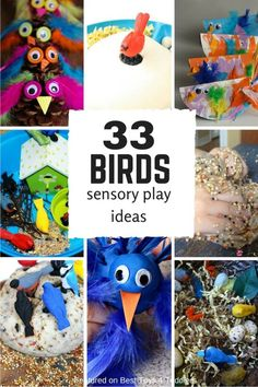 33 sensory play ideas with birds for toddlers and preschoolers