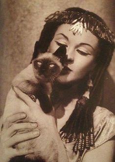 Vivien Leigh with a feline friend. www.kittyloversclub.com