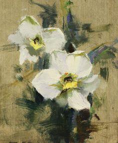 Lipking - Daffodil 5 x 4