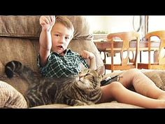 Cat saves kid