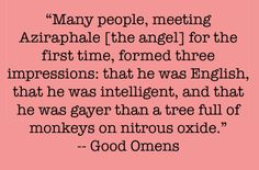 Good Omens is full of amazing quotes. Neil Gaiman is one of my favorite authors...