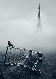 Stunning Photography by Mikko Lagerstedt