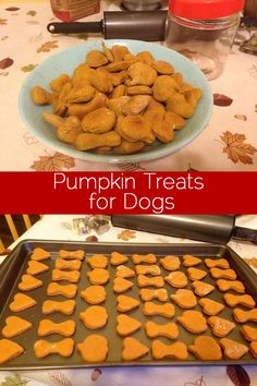 Pumpkin dog treat recipe - We love our pumpkin treats! Why not also treat your furry friends with a seasonal specialty. Pumpkin dog treat recipe on the site. Puppy Treats, Diy Dog Treats, Healthy Dog Treats, Soft Dog Treats, Homeade Dog Treats, Peanut Butter Dog Treats, Food Dog, Puppy Food, Mantecaditos