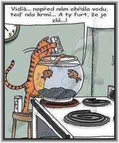 Really funny cartoon joke image. For the best humor cartoon jokes visit… Cat Jokes, Cartoon Jokes, Funny Cartoons, Funny Comics, Cats Humor, Cartoon Cats, Humor Humour, Funny Shit, Funny Jokes