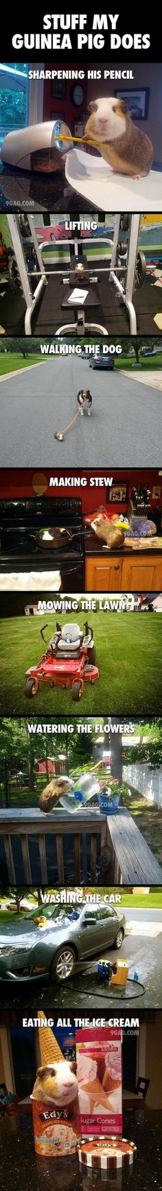 Had to repin this solely for the lawn mower pic, it's soo cute!