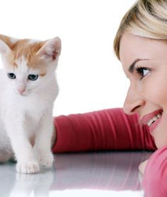 Cat care tips: - Caring for cat at Catsincare.com!- Top cats Tips at Catsincare.com!