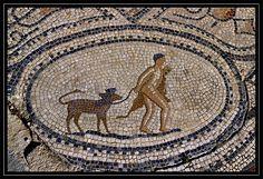 Volubilis, Nothing's Changed, Mosaic Art, Tiles, Modern, Romans, Mosaics, Italia, Room Tiles
